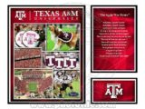 texas am collage