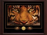 LSU eyesseal gamble frame