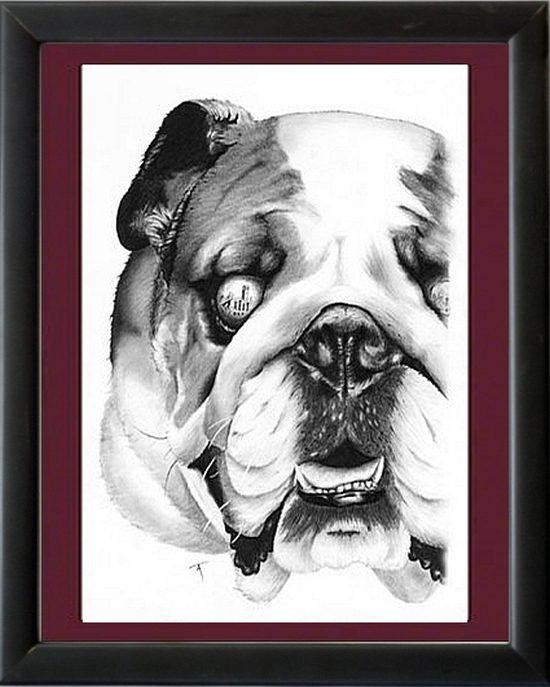 miss state bulldog framed tim
