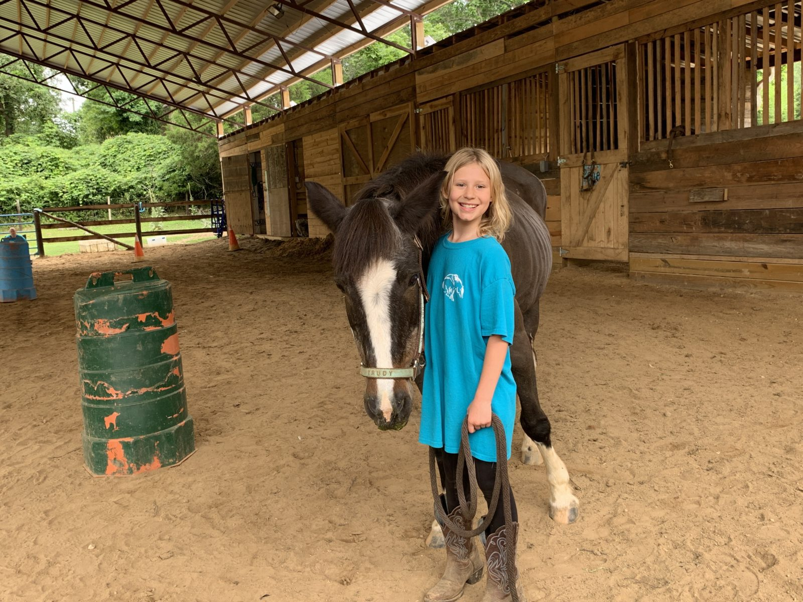 Therapy horse Tootsie Roll