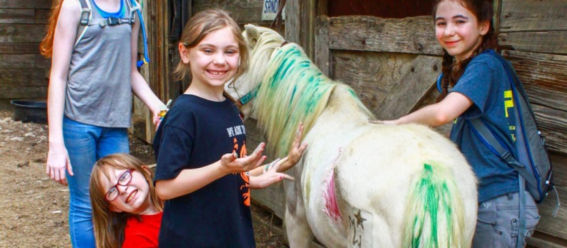 equine-assisted-therapy-definition